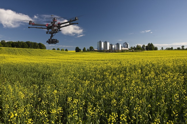 Attract More to Your Farm with an Aerial Video Production